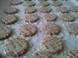Iced Cookies!